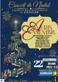 2018-12-22-Concierto-Navidad-Catllar